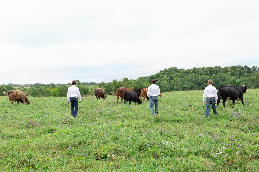 SPECIAL FEATURES: Dierks Farms - Innovative Family Cattle Farming